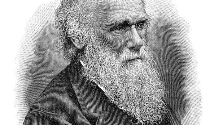 O 'mistério abominável' de Darwin.